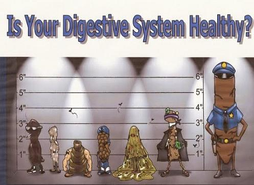 Poopie Policemen Is Your Digestive System Healthy